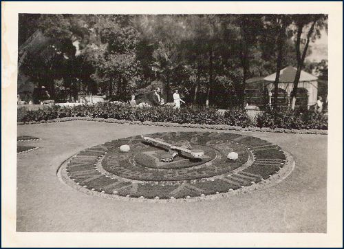 Taronga Zoo Floral Clock